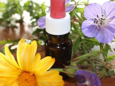 Essential Oils Care - Aromatherapy Oils
