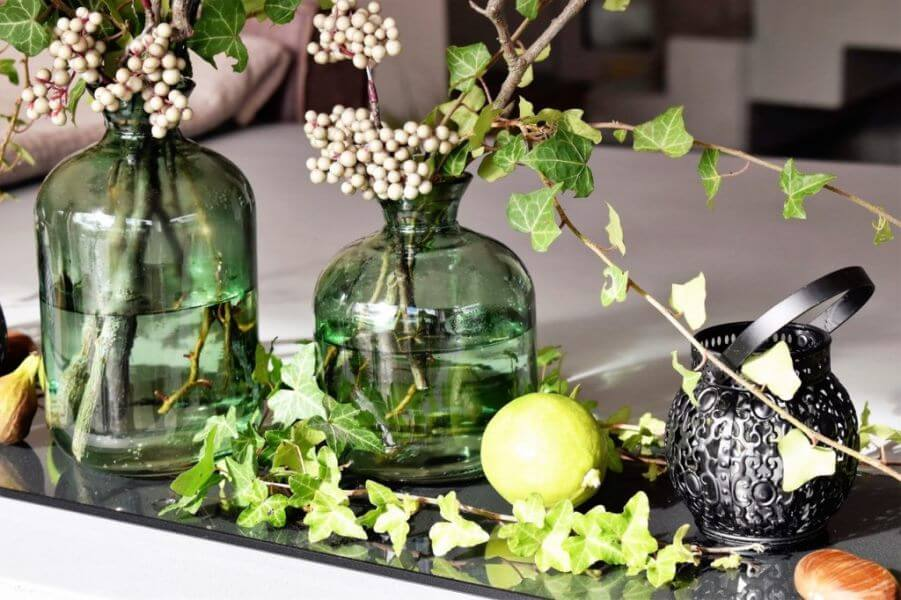 Essential Oils Care - Aromatherapy Oils