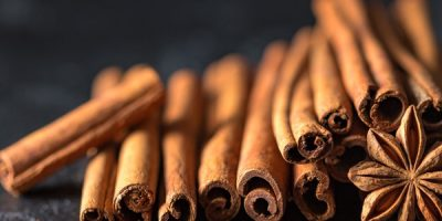 Essential Oils Care - Bark Essential Oil