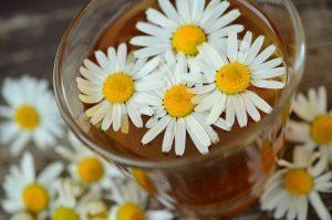 Essential Oils Care - Chamomile Oil