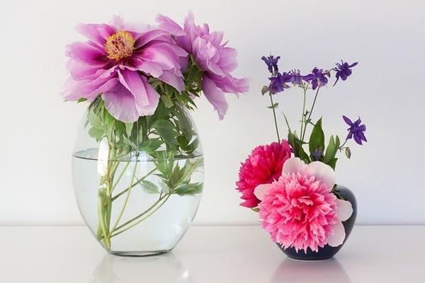 Flower essential oils often have soothing fragrances.