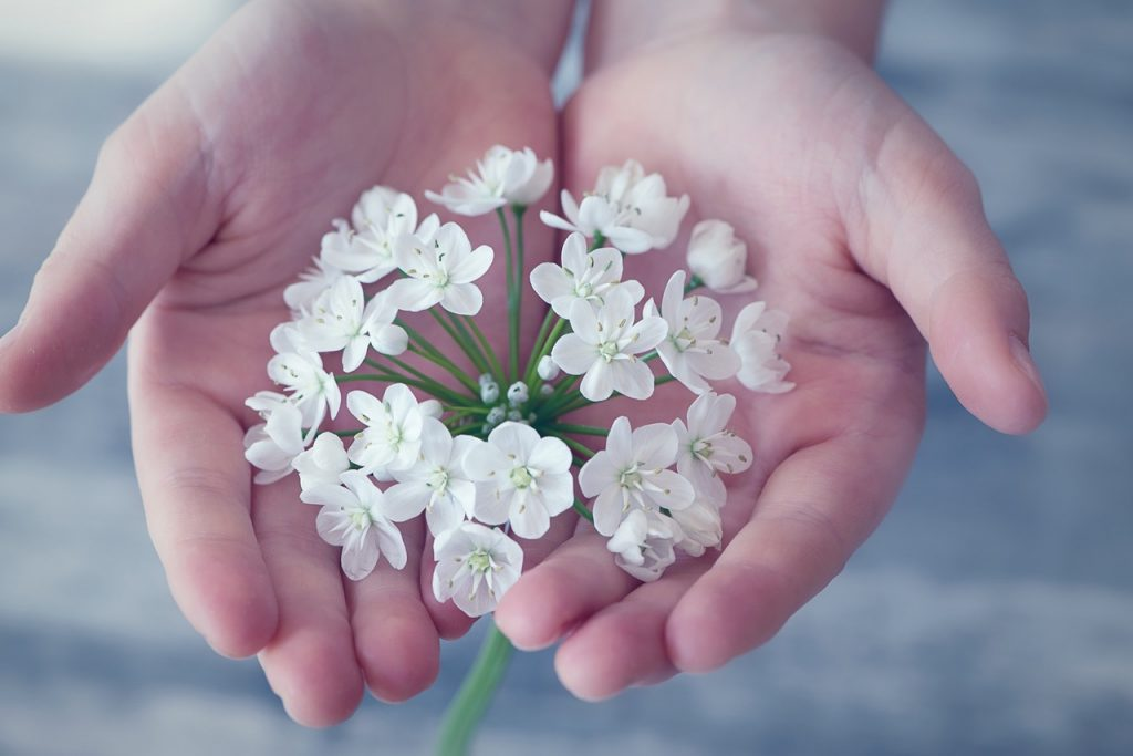 Essential Oils Care - Flower Essential Oil