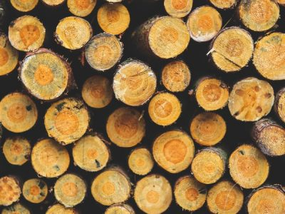 Essential Oils Care - Sandalwood Oil