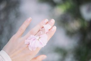 Essential Oils Care - Skin Oil