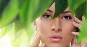 leaves-essential-oil