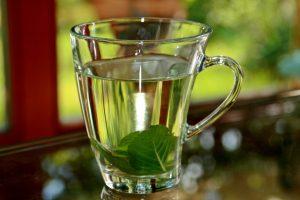 Essential Oils Care - Peppermint Oil Skin Care 1