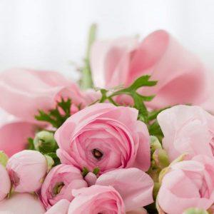 Essential Oils Care - Rose Oil for Skin