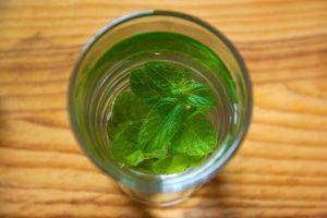 Essential Oils Care - Peppermint Oil Hair Care