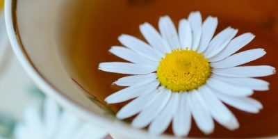 Chamomile-infused drink