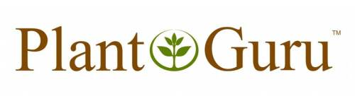 Plant Guru Logo