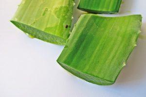 Slices of aloe vera leaves