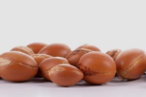 Argan nuts on white background